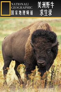 寰宇地理之美洲野牛求生录