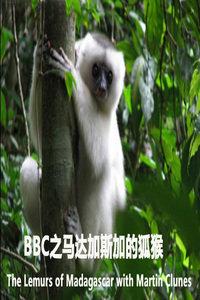 BBC之马达加斯加的狐猴