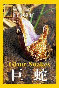 寰宇地理之巨蛇