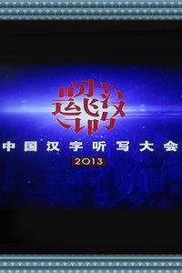 中国汉字听写大会 2013