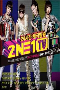 2NE1TV 2011