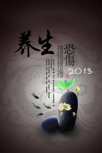 养生 贵州卫视 2013