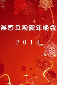 陕西卫视跨年晚会 2014