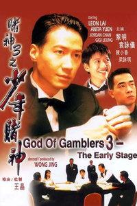 赌神3:少年赌神