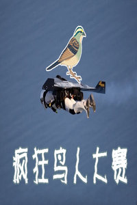 疯狂鸟人大赛 2010