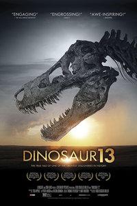 恐龙13号