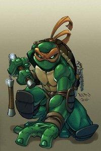龟之神力:忍者神龟的历史
