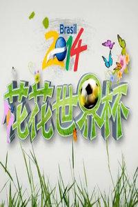 花花世界杯 2014