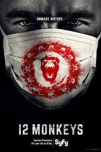 12只猴子 第一季