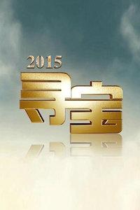 寻宝 2015