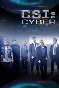 网络犯罪调查 第二季