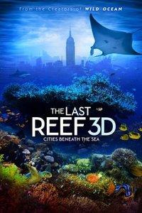 最后的珊瑚礁