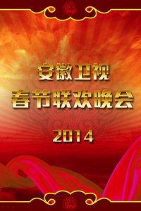 安徽卫视春节联欢晚会 2014