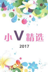 小V精选 2017