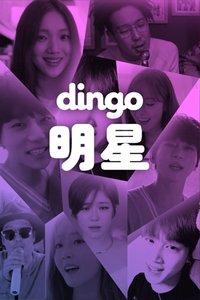 dingo 明星 2017