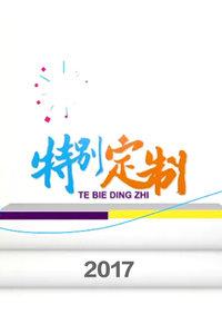 特别定制 2017