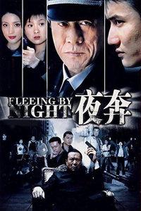 夜奔(全28集)