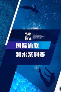FINA国际泳联跳水系列赛