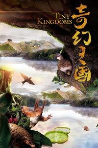 《奇异王国》首曝概念片 始创天然电影新高度