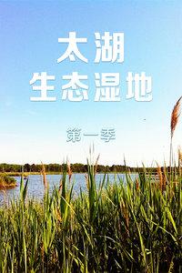 太湖生态湿地 第一季