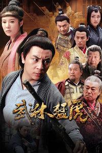 武林猛虎(全30集)