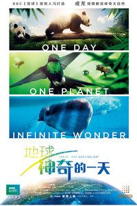 地球:神奇的一天