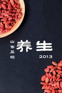 养生 山东卫视 2013