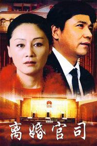 离婚官司(20集完)