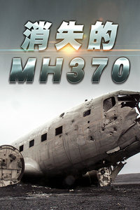 消失的MH370