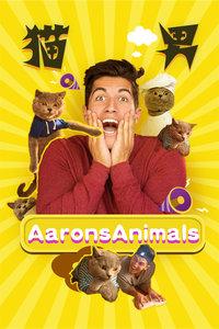 猫男AaronsAnimals 第一季