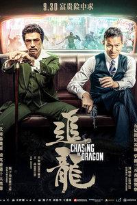 2017动作,犯罪追龙 电影天堂免费迅雷下载