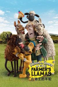农场主的羊驼