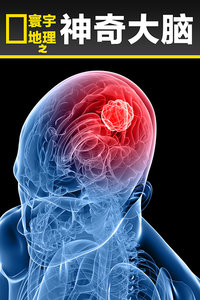 寰宇地理之神奇大脑