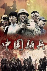 中国骑兵 D