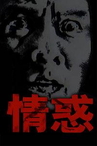 情惑(全24集)