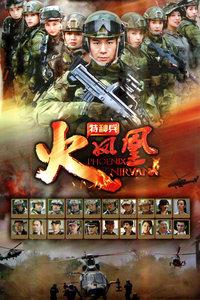 特种兵之火凤凰 DVD版