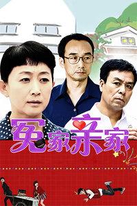 冤家亲家(全30集)