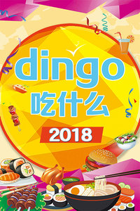 dingo 吃什么 2018