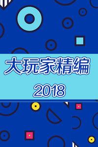 大玩家 精编 2018