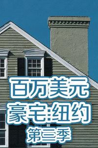 百万美元豪宅:纽约 第三季