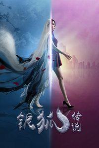 银狐传说()