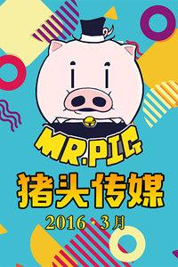猪头传媒20163月