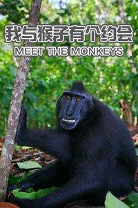 我与猴子有个约会