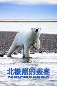 北极熊的盛宴