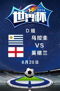 2014世界杯 D组乌拉圭VS英格兰 6月20日