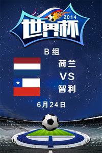 2014世界杯 B组荷兰VS智利 6月24日