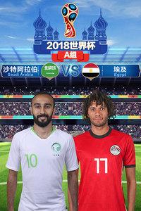 2018世界杯 A组沙特阿拉伯VS埃及 6月25日