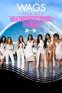 运动明星娇妻团:迈阿密 第一季