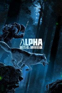 阿尔法狼伴归途