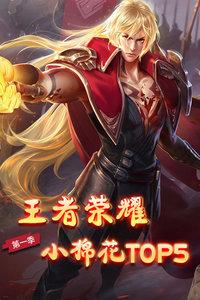 王者荣耀小棉花Top5 第一季